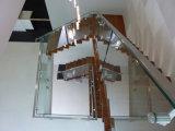 Stairwell 정연한 마개 유리 난간