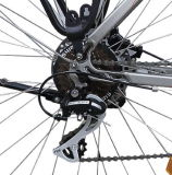 Stadt-vorbildliches elektrisches Fahrrad mit Mittler-Fahren Motor (TDB14Z)