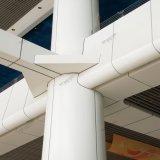 Panneau en aluminium de mur rideau de panneaux de plafond artistique en métal