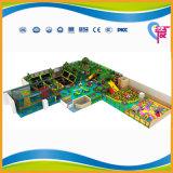 高品質の普及した子供の遊園地(A-15248)