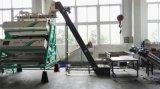 Máquina elevada do classificador da cor do chá verde da Dobro-Camada do sensor de Metak, preço de Fctory