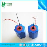 7s 25.9V 2.6ah Li Ion Battery Pack 24V Lithium Ion Battery avec importation 18650 Cells