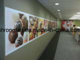最新の流行の自由なデザイン高品質のビニールの壁の壁画の印刷