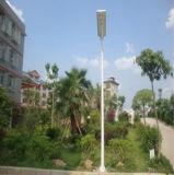 15W luz de calle solar doble integrada de la fuente de luz LED con el sensor de movimiento