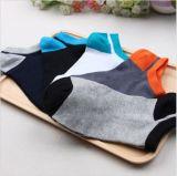 Baumwollreine Farben-Knöchel-Socke 100%