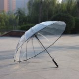شعبيّة سيّارة مفتوحة نمو قبة شكل فقاعات مظلة شفّافة أكثر