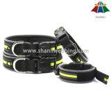 Collar de perro ajustable de alta calidad del poliester del color sólido del estilo 15~20m m del deporte de la Caliente-Venta con la tira reflexiva y el Velcro
