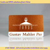 Previliege 멤버쉽을%s 빛나는 인쇄된 PVC 자석 줄무늬 카드