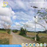 3-5 Jahre Garantie 30W-60W PFEILER Solar-LED Straßenlaterne-