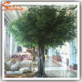 Albero artificiale del Ficus di nuovo disegno 2016 per la decorazione