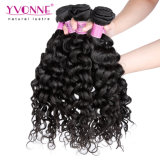 Cabelo Curly italiano popular do Virgin do brasileiro de 100%