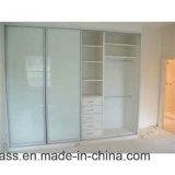 戸棚のためのカラーパターンによって印刷されるガラスドア