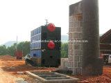 Vapor industrial Ouput carvão de 0.5~10 T/H, caldeira de vapor da biomassa