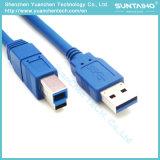 Maschio del USB al cavo di stampante del Bm del USB per il computer portatile del calcolatore