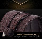 Courroie en cuir de crocodile de cuir d'homme en métal véritable de luxe de taille