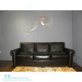 O sofá moderno da sala de visitas do estilo ajustou-se para a HOME (HW-7048S)