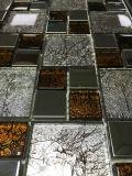 内部は飾るBulidingの文書/Mosaico (VMW3203)のためのガラスモザイクを