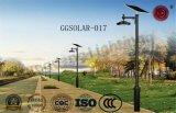 5 anni di garanzia IP65 scelgono/doppio indicatore luminoso di via del braccio LED