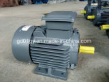 3 применения мотора индукции участка в индустриях