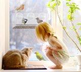 Kundenspezifische freie im Freien Acrylfenster-Vogel-Zufuhr
