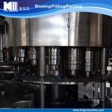 De Installatie van de Machines van het Flessenvullen van het bier voor de Sprankelende Fabrikant van de Drank
