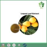 酸化防止剤ビワの葉のエキスの/Ursolicの純粋な酸20%~98%