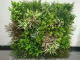Plantas decorativas da grama da parede verde artificial