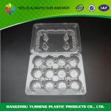 Solos rectángulos individuales plásticos de la magdalena