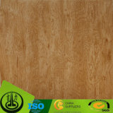 Documento decorativo competitivo per il pavimento, mobilia, HPL, MDF