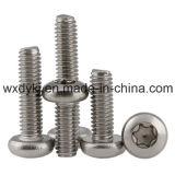 Vorsprung-Kontaktbuchse-Wannen-Kopf-Möbel-Schrauben-Befestigungsteil-Fabrik des Edelstahl-Befestigungsteil-sechs von China ISO 14583