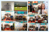 Brouette Wb6500 de construction de Qingdao