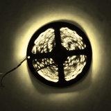 むき出しの床5050 LEDの滑走路端燈