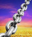 H.D.Gのドックのフェンダーの鎖