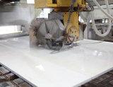 Спеченные мокрого типа Алмазный сегментированные пилы (400мм)