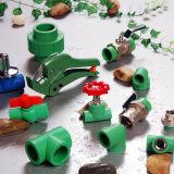 PPR 관과 녹색 이음쇠의와 백색 색깔 PPR 관