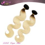 2015 Ton-brasilianische Jungfrau-Haar Ombre Haar-Extension der Form-zwei