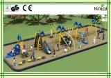 Оборудование детей Kaiqi взбираясь для спортивной площадки (KQ9309A)