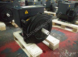 Alternator senza spazzola 6kw~500kw con Single Bearing o Double Bearing