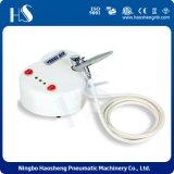 열 Shap 최고 인기 상품 장식용 공기 압축기 HS08-2AC-SK