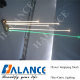 Water décoratif Optical Fiber Lights pour Landscape Lighting