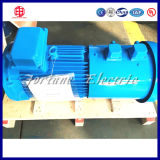 Tipo asíncrono del motor y voltaje ca 220V/380V/415V/460V motor de 3 fases