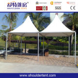 O Family o mais novo Tent com Durable Quality