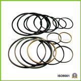 Sprung mit Energie versorgte PTFE Dichtungen für Zylinder/Abnützung-Ringe