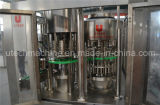 Wasser 5000bph Bottling Water Filling Plant