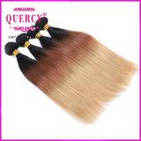 Omberのマレーシアのバージンの毛は安いマレーシアの人間の毛髪3の調子の毛の拡張を束ねる