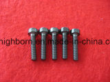 Zirconia Ceramic Screw e Bolt