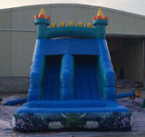 Personal Used Commercial Used를 위한 여름 Inflatable Water Slide