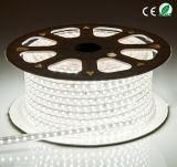 5050 60LEDs 220V / 240V LED Strip / tira flexible del LED