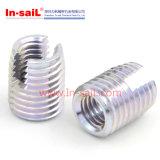 Spiraalvormig-Sluiten van het roestvrij staal paste Tussenvoegsels in