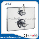 Rectangular Plate를 가진 금관 악기 Twin Concealed Exposed Thermostatic Shower Valve